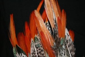 flame feathers image